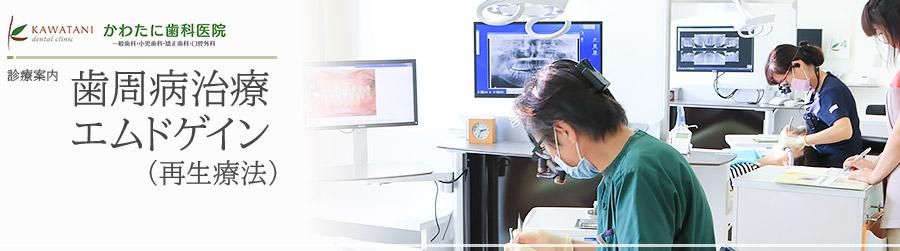 歯周病治療 エムドゲイン(再生療法)